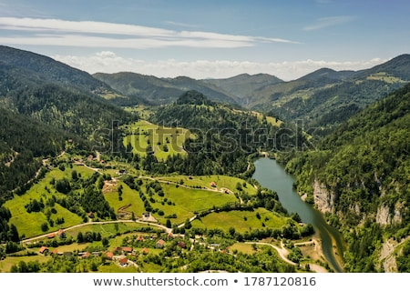 Aerial view at Tara mountain forest in Serbia Stock photo © boggy