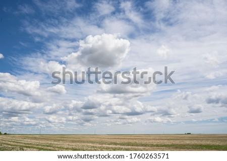 Preria niebo krajobraz żywy trawy gospodarstwa Zdjęcia stock © SimpleFoto