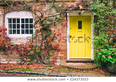 view from the country cottage on an autumn landscape Stock photo © wjarek