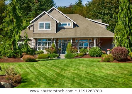 Huis groen gras milieu behoud Stockfoto © devon