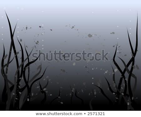 Murky depths Stock photo © nicemonkey