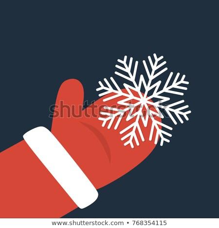 romantische · winter · meisje · sneeuw · dame · mode - stockfoto © beaubelle