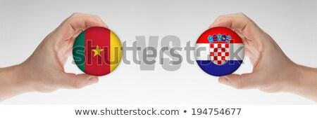 Kameroen vs Kroatië groep fase wedstrijd Stockfoto © smocker03