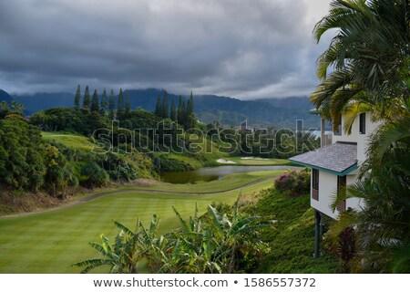 hanalei valley from princeville overlook kauai stock photo © backyardproductions