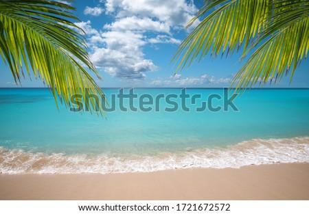 Beautiful seaside beach Stock photo © sdecoret