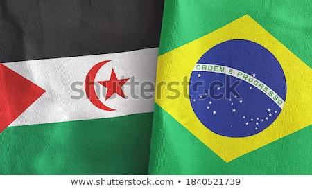 Foto stock: Brasil · occidental · sáhara · banderas · rompecabezas · aislado