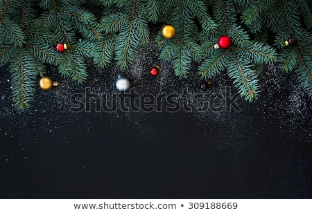 веселый · Рождества · пластина · вектора · Дед · Мороз - Сток-фото © get4net
