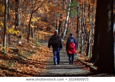 Twee ouder mannen lopen wandelen parcours Stockfoto © smuki