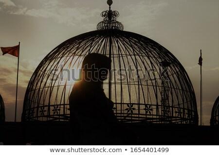 Nina puesta de sol ilustración naturaleza paloma Foto stock © adrenalina