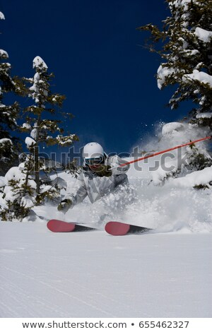 Man in white & grey camo suit off-piste. Stock photo © IS2