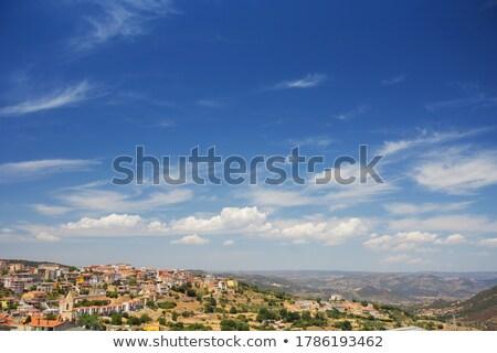 skyline of orgosolo city on sardinia island Stock photo © compuinfoto