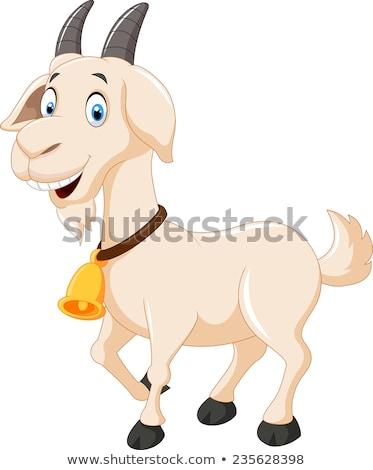 Boldog rajz kecske képregény haszonállat karakter Stock fotó © Genestro