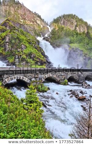 Waterfall in Norway Stock photo © Kotenko