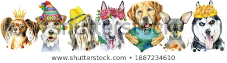 Acuarela retrato golden retriever perro corona cute Foto stock © Natalia_1947