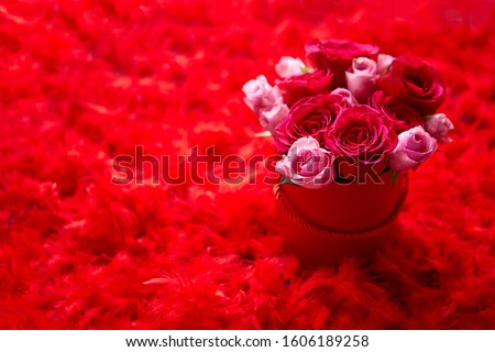 rosas · rosa - foto stock © dash