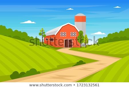 Farm scene with crops and barn stock photo © colematt