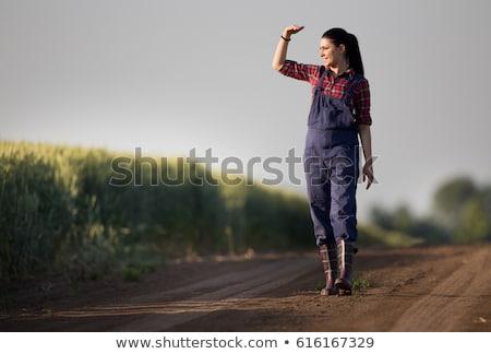 ストックフォト: 幸せ · 満足した · 若い女性 · 立って · 麦畑 · 自然