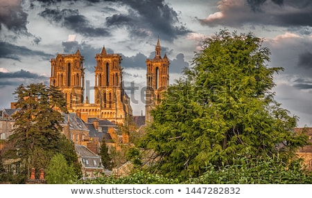 Laon Cathedral, France Stock photo © borisb17