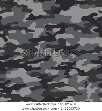 soldier military camouflage pattern in white and gray shade Stock photo © SArts