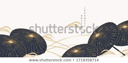 зонтик · изолированный · белый · текстуры · древесины - Сток-фото © foka