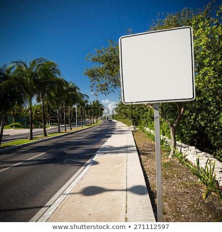 カリビアン 幹線道路の標識 緑 雲 通り にログイン ストックフォト © kbuntu