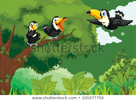father pointed parrot in drawing jungle Stock photo © Paha_L