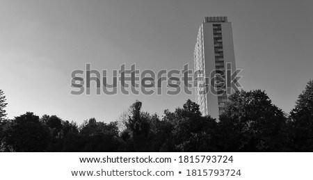big mountain in evening light Stock photo © gewoldi