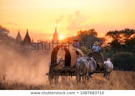 ストックフォト: 風景 · ミャンマー · 木製 · 住宅 · 水 · 空