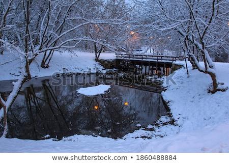 Lámpa reggel háttérvilágítás napos fal fény Stock fotó © Hasenonkel