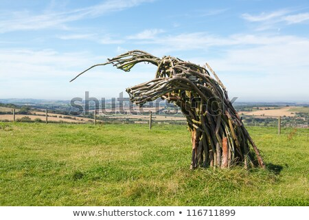 Traditional green man woven from branches Stock photo © backyardproductions