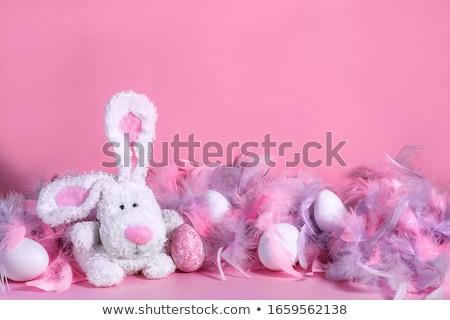 Bianco uova soft rosa Foto d'archivio © Elegies