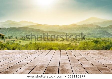 Berg veld voorjaar zonsondergang landschap ontspannen Stockfoto © klagyivik