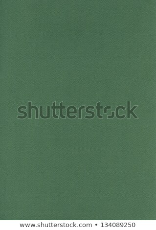 Fiber Paper Texture - Fern Green stock photo © eldadcarin