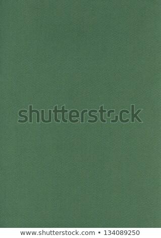 Fiber Paper Texture - Fern Green Stock photo © eldadcarin
