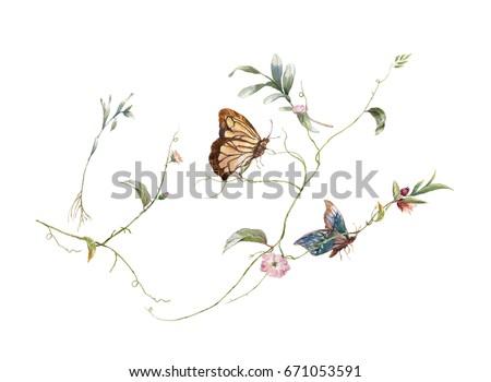 緑 · 色 · 水彩画 · 蝶 · 花 · 美しい - ストックフォト © elmiko