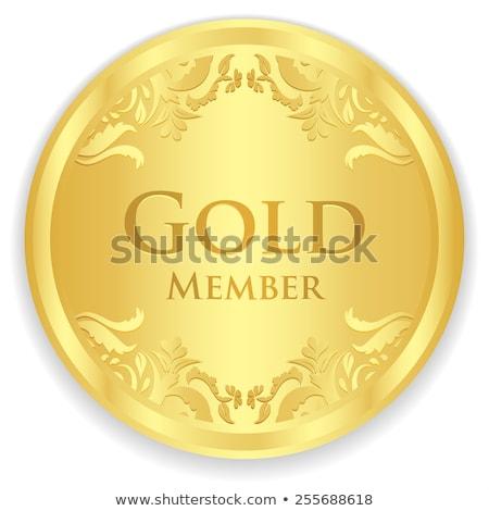 Złota członek odznakę złoty vintage wzór Zdjęcia stock © liliwhite