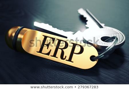 ERP Concept. Keys with Golden Keyring. Stock photo © tashatuvango