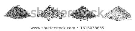 Zemin haşhaş tohumları çanak beyaz Stok fotoğraf © Digifoodstock