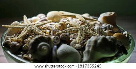 close up of seashells and corals in bowl on table Stock photo © dolgachov