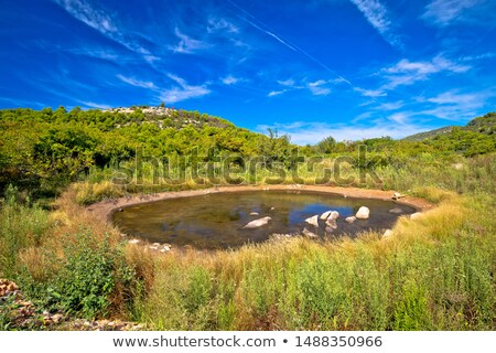 Karst desert water oasis on Dugi Otok island Stock photo © xbrchx