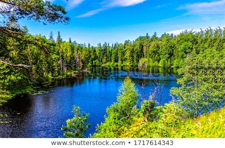 Forest lake scenery Stock photo © tuulijumala