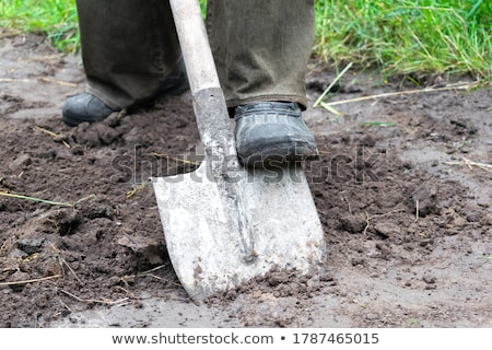 Man with a shovel Stock photo © photography33