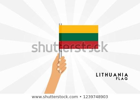 Litvánia kicsi zászló térkép szelektív fókusz háttér Stock fotó © tashatuvango