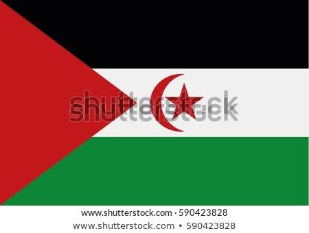 Arap · demokratik · cumhuriyet · bayrak · kuru · toprak - stok fotoğraf © creisinger