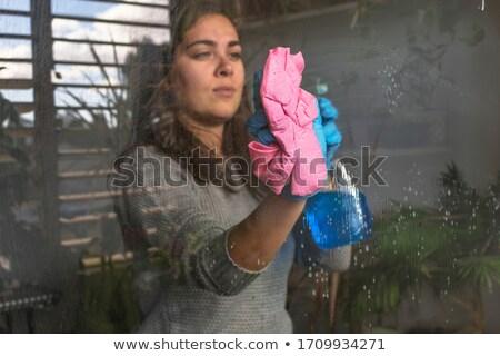 Yansımalar ev yansıma kapılar pencereler kanal Stok fotoğraf © chris2766
