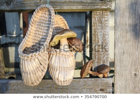 Rural still life. Russian traditional bast shoes on background of  boards. Vertical format. Stock photo © Paha_L