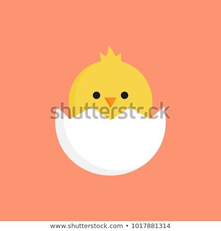 Occhi chick easter egg illustrazione uovo Foto d'archivio © adrenalina