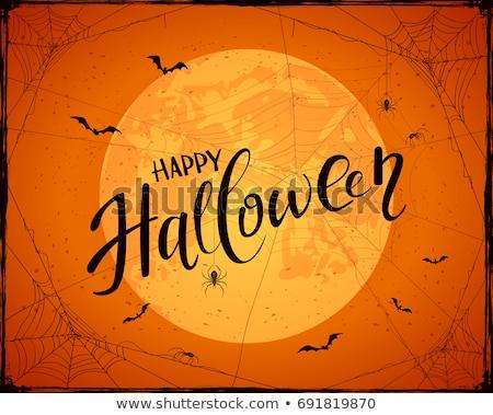 örümcek ağı soyut halloween su doku dizayn Stok fotoğraf © pashabo