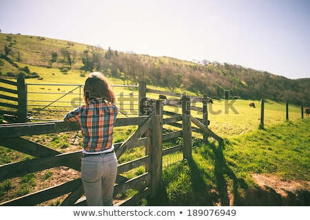 Young girl on farm gate Stock photo © IS2