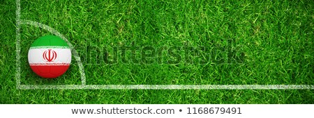 Football in iran colours against closed up view of grass Stock photo © wavebreak_media